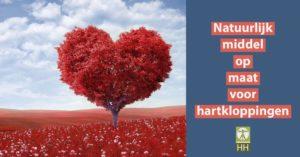 Een natuurlijk middel op maat voor hartkloppingen