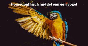 Een homeopathisch middel van een vogel